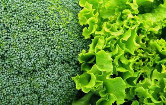 Homemade Fruit and Vegetable Wash - Leafy greens and produce without skins need special care