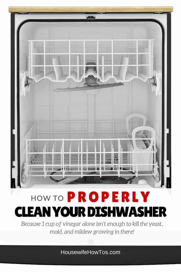 How to clean your dishwasher properly - because a cup of vinegar is not enough to kill the bacteria, fungi, and mold it is spreading to your dishes!