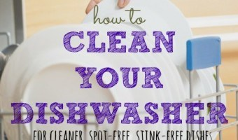 How To Clean A Dishwasher For Best Performance