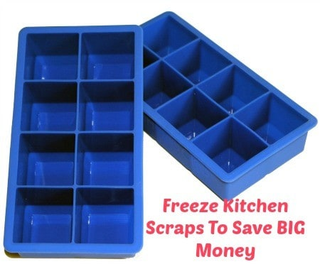 Freeze kitchen scraps to save money from HousewifeHowTos.com