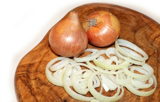 Kitchen scraps to freeze - Sliced onions