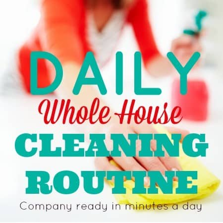 Daily Cleaning Routine Printable from HousewifeHowTos.com
