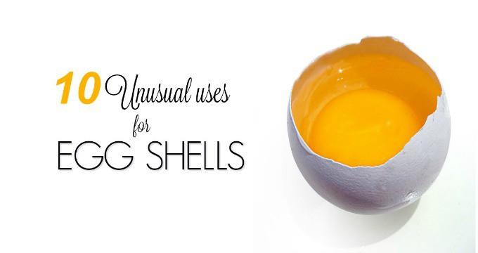 10 Unusual Uses For Eggshells