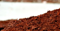 Where To Get Free Mulch For Your Garden