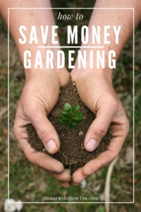 How To Save Money Gardening - Grow more for less green