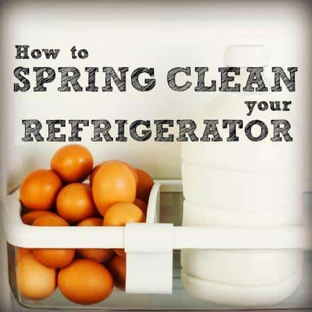 how to spring clean your refrigerator. Black Bedroom Furniture Sets. Home Design Ideas