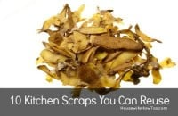 Kitchen scraps you can reuse from HousewifeHowTos