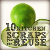 Kitchen scraps you can reuse from HousewifeHowTos.com