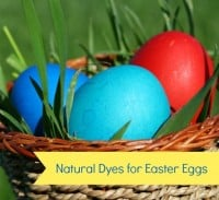 Natural dyes for Easter eggs from HousewifeHowTos.com
