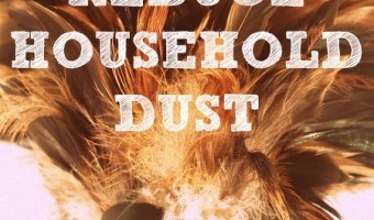 How To Reduce Household Dust