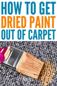 How to Get Dried Paint out of Carpet #carpetstain #driedpaint #stainedcarpet #stainsolutions #stainremoval #carpetstainremoval #carpetcare #cleaning #housewifehowtos #cleaninghack #householdtips