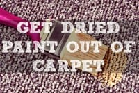 How To Get Dried Paint Out Of Carpet