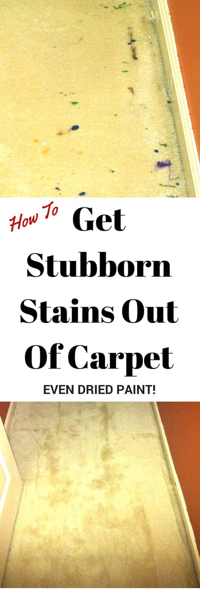 Here's how to get dried paint, spilled coffee, pet messes and other mystery stains out of carpet. It really works!