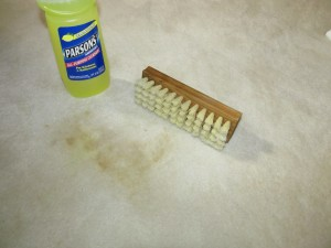 Bottle of household ammonia and scrub brush next to stain on carpet