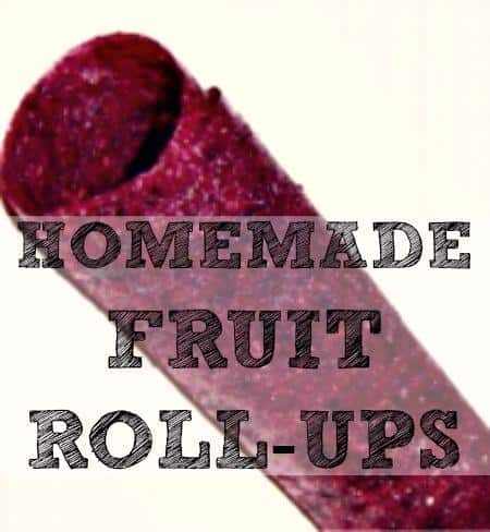 How to make homemade fruit rollups from HousewifeHowTos.com