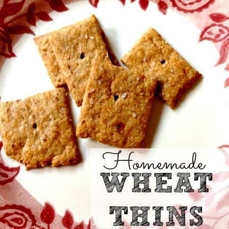 Homemade Wheat Thins recipe from HousewifeHowTos.com