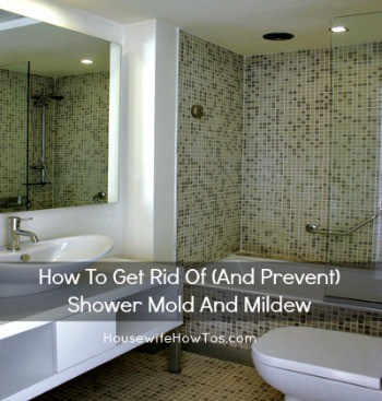 How to get rid of and prevent shower mold and mildew from HousewifeHowTos.com
