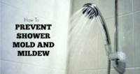 How To Get Rid Of Mold In Showers