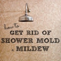 how to get rid of shower mold and mildew from HousewifeHowTos.com