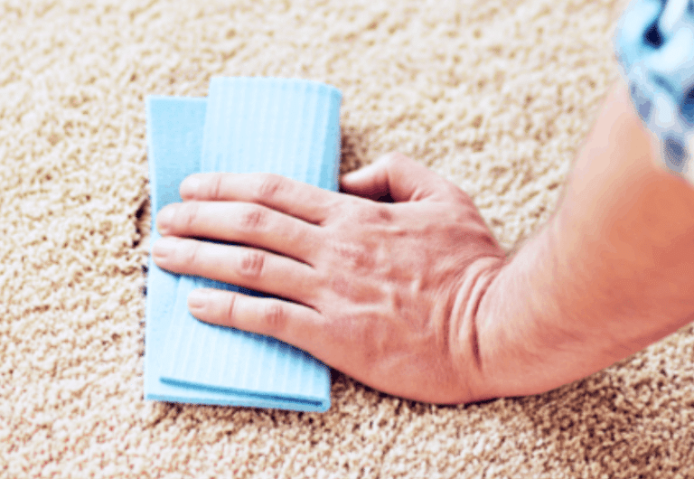 Closeup of hand pressing sponge onto carpet while spraying to remove carpet stain