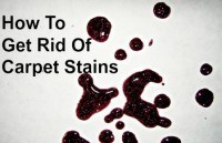 How to get rid of carpet stains from HousewifeHowTos.com