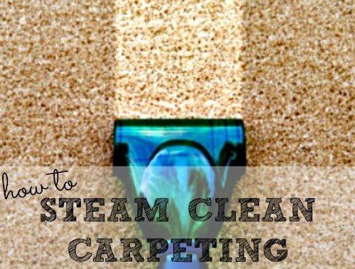 how to steam clean carpet from HousewifeHowTos.com