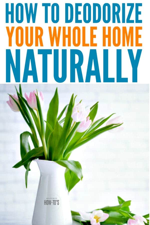 How to Deodorize Your Home Naturally - Stop wondering if you are noseblind. Here is where to find odors and how to treat them. #deodorizing #cleaning #odorcontrol #housewifehowtos #cleanhouse #householdtips