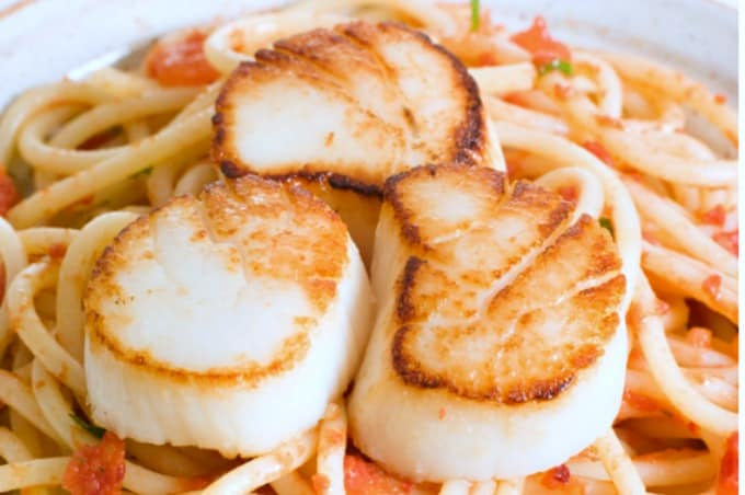 Perfectly seared scallops on a bed of lightly sauced pasta in this Spaghetti with Scallops Recipe