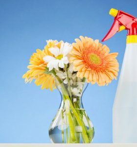 Homemade All-Purpose Cleaner - Spray bottle on counter next to vase of flowers