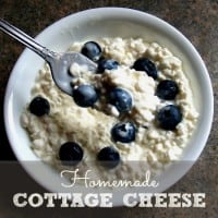 How To Make Homemade Cottage Cheese