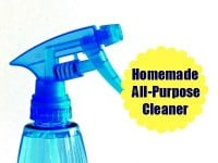 Homemade all purpose cleaner mix from HousewifeHowTos.com