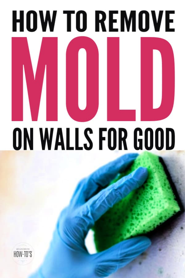 How to Get Rid of Mold on Walls for Good