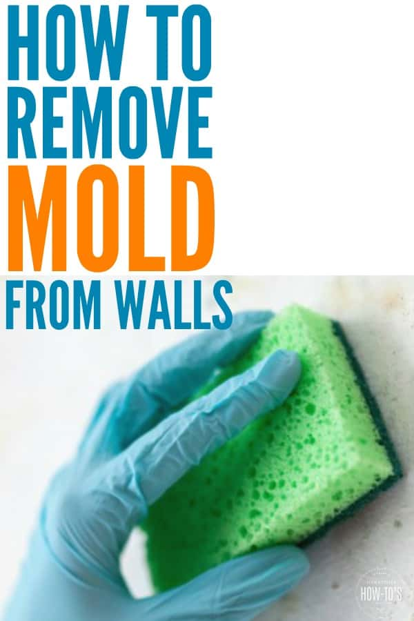 How Remove Mold From Walls And Keep Returning