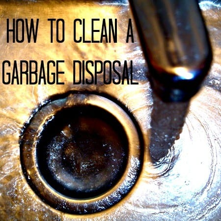 How to clean a garbage disposal from HousewifeHowTos.com