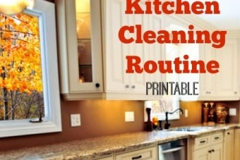 Nightly Kitchen Cleaning Routine (Printable)