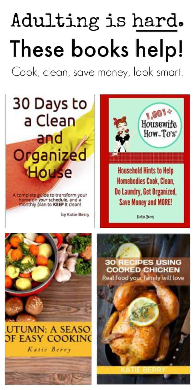 Get a spotless house, plan nutritious meals and save money with the tips in these helpful books by Katie Berry of @HousewifeHowTos