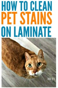 How to Clean Pet Stains on Laminate Floors | Are mine the only pets that make messes only when I am asleep? These tips get my floor looking like new and get rid of the smell, too. #petstains #pets #laminateflooring #cleaning #cleaningadvice #homemaking #housework