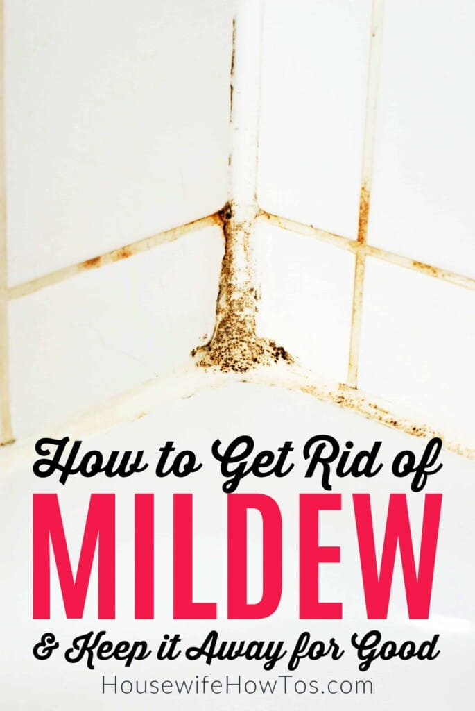 How to Get Rid of Mildew and Keep it Away for Good