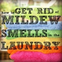 How To Get Rid of Mildew Smell in the Laundry