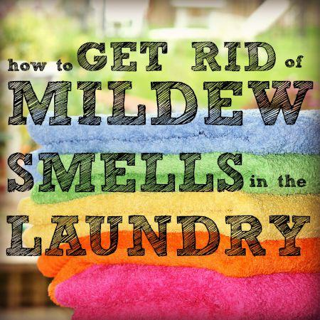 How to get rid of mildew smell in kitchen cabinets