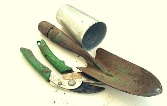 What to buy in June - Garden tools