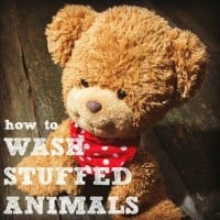 How To Wash Stuffed Animals