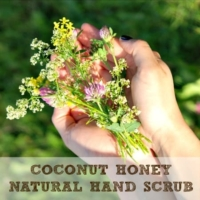 Coconut Honey Natural Hand Scrub Recipe