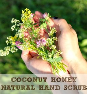 Coconut Honey Natural Hand Scrub
