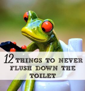 12 Things To Never Flush Down The Toilet