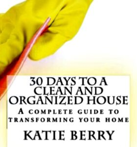 Get An Organized Home in 2016