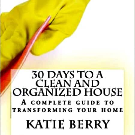 Get A Clean And Organized Home In 2016 Housewife How To 39 S
