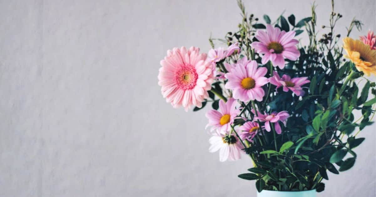 How To Keep Flowers Fresh Longer 187 Housewife How Tos 174