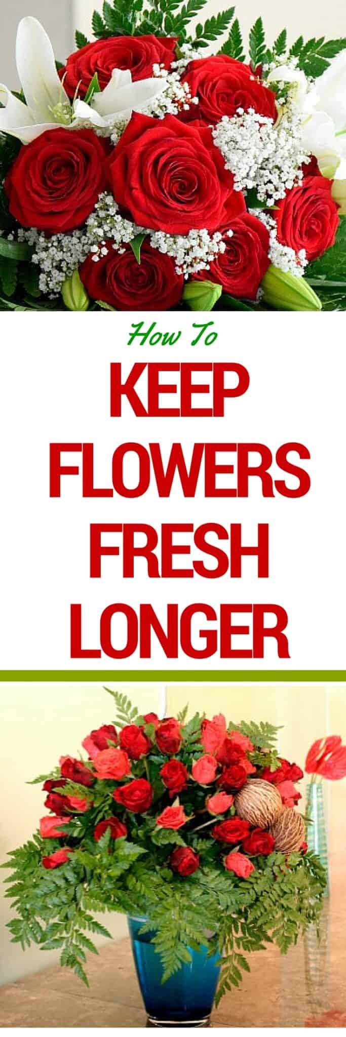 How To Keep Flowers Fresh Longer -- make them last twice as long with these easy tips!