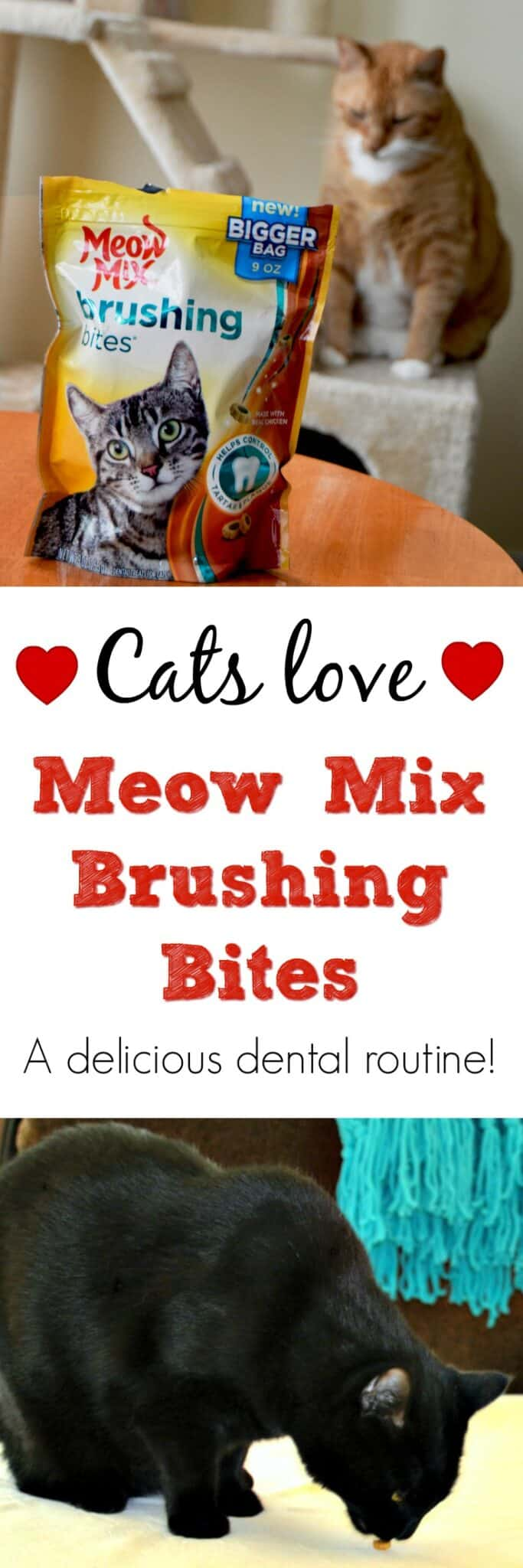 #ad Dental decay can have long-term effects on a cat's health. That's why I gave my cats Meow Mix Brushing Bites, crunchy treats that help reduce plaque and tartar.